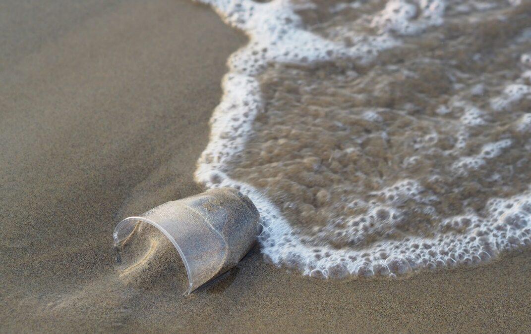 Economía circular: una nueva vida para el plástico